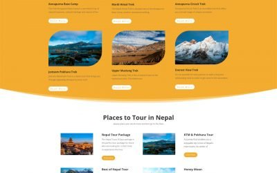 Website for a Travel company